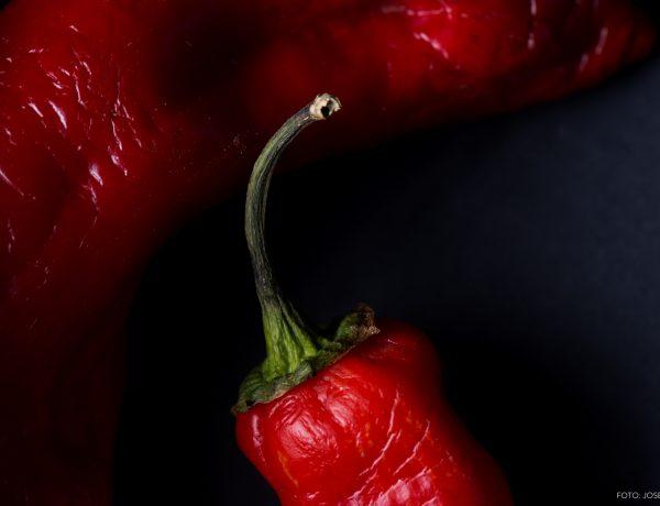 fotografía gastronómica, fotógrafo de alimentos, fotógrafo profesional de gastronomía